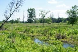 blueheronminsitries_-tamarack-lake_-spring-2015-17
