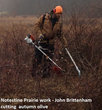 notestine-prairie-work