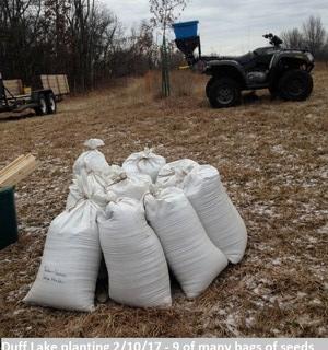 Duff Lake planting