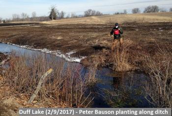 Peter Bauson planting along ditch
