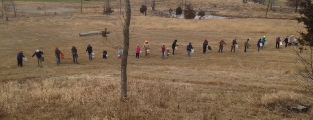 BHM December Prairie Planting 12_7_2019 Brennan Woods _ 24 in a line! by Fred Wooley