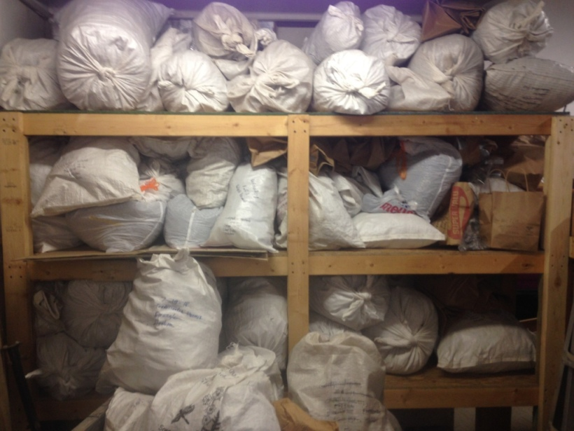 Seed storage, dried and ready to be cleaned. BHM barn shelves. 10_29_2019 by Fred Wooley